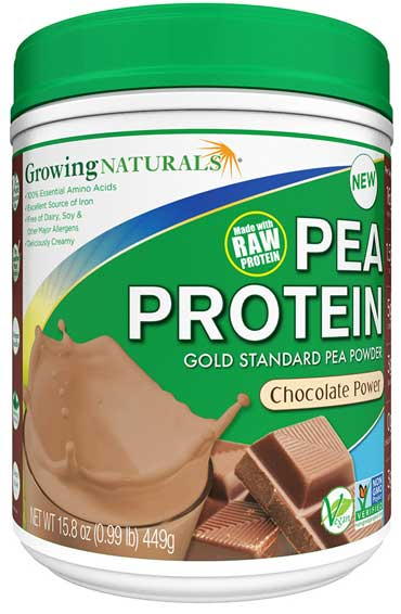 Pea Protein Chocolate Power